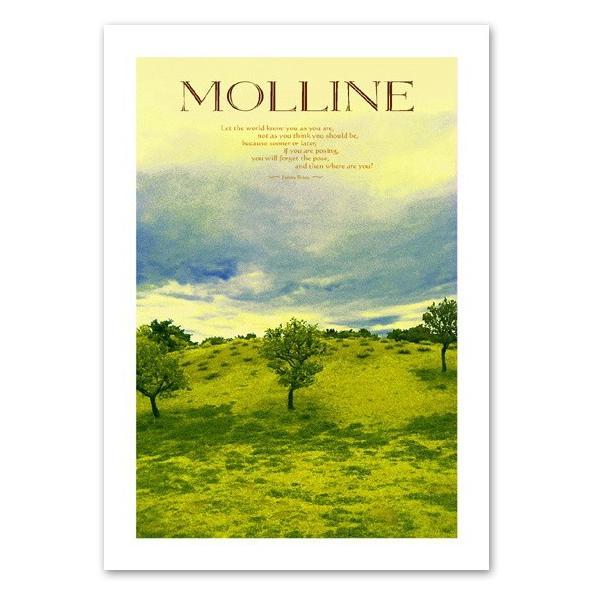ポスター A2サイズ 『Molline』 インテリア フォト 風景,景色 ポスター Interior Art Poster|blankwall