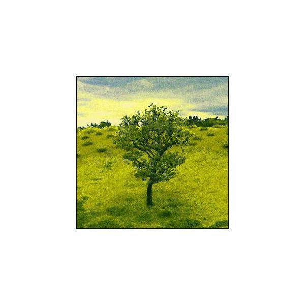 ポスター A3サイズ 『Molline』 インテリア フォト 風景,景色 ポスター Interior Art Poster|blankwall|02