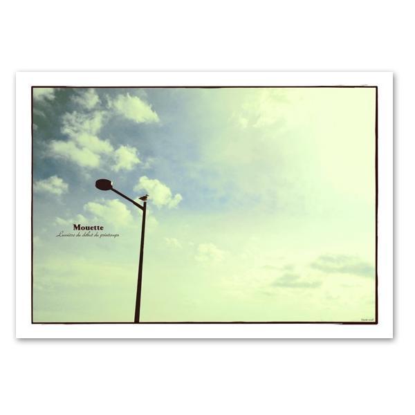 ポスター A3サイズ 『Mouette』 アート/フォト/風景,景色ポスター/ Interior Art Poster|blankwall