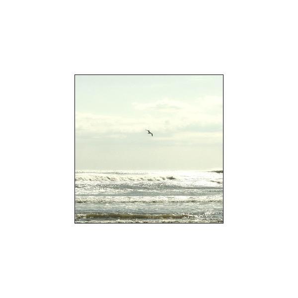 ポスター A3サイズ 『Splendeat』 フォト 風景,景色 条件付き(10,800円以上)送料無料 インテリア アート|blankwall|02
