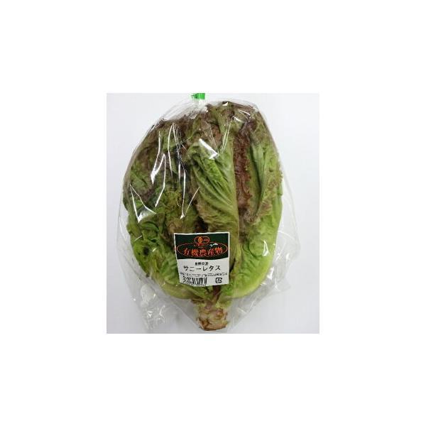 【フルヤの安心野菜】【冷蔵】有機サニーレタス 1玉