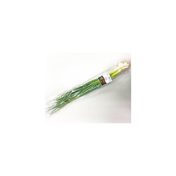 【フルヤの安心野菜】【冷蔵】有機小ねぎ 100g