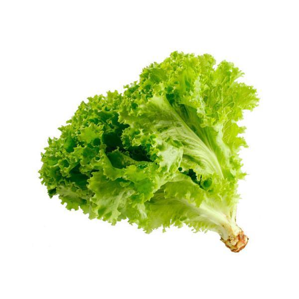 送料無料 【朝市場の新鮮野菜】サニーレタス 1個 x2個セット