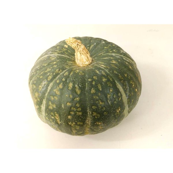 【朝市場の新鮮野菜】南瓜 6玉サイズ 1個