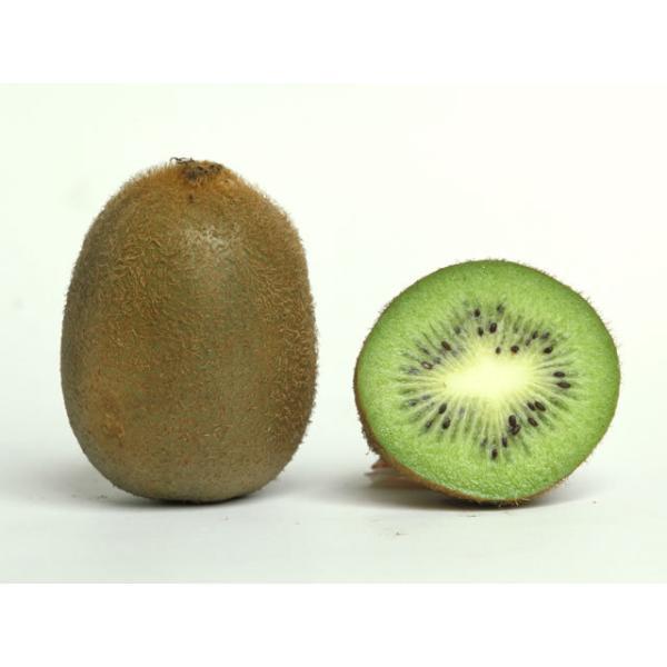 送料無料 【朝市場の新鮮野菜】キウイフルーツ 33玉サイズ 1個 x2個セット
