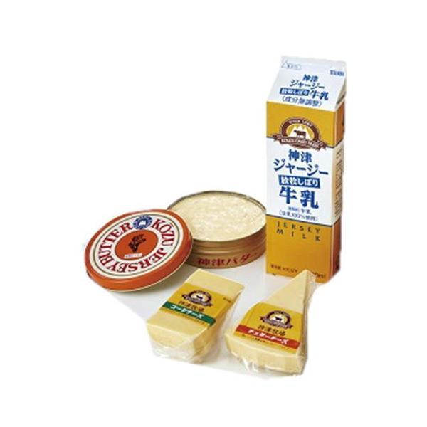 神津牧場セレクション4(牛乳、缶バター、ゴーダ、チェダーチーズ) 関東送料765円 パン作り お菓子作り 製パン 製菓