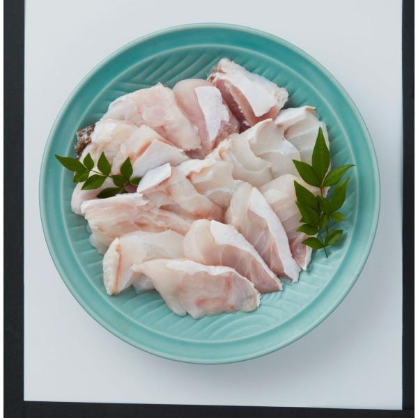 【2021冬ギフト】福井鮮魚 天然クエ鍋(身・あら)のセット 500g【冷凍】