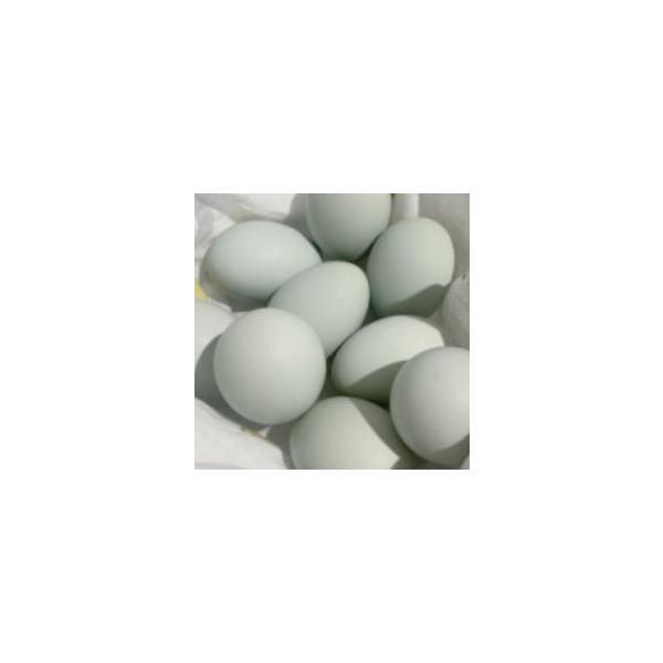 八ヶ岳農場アローカナ卵 6個入り
