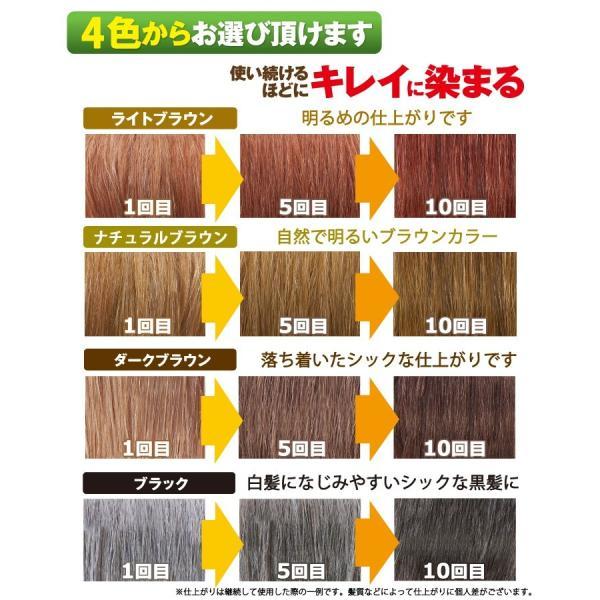 利尻カラーシャンプー3本セット シャンプーで白髪染め!27種類の植物エキスで髪・頭皮に優しい!利尻昆布エキス!使い続けるほどに染まる! blondie-blond 02