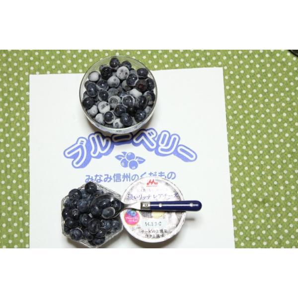 南信州産 冷凍ブルーベリー ハーバート 900g