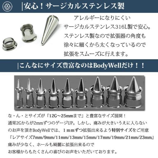 拡張器 ボディピアス スタジオでも使用 拡張器セット 9mm レアサイズ bodywell 02