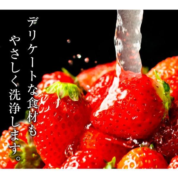 田中金属製作所グループのお店 マイクロナノバブル 蛇口取付 アダプター awawa(アワアワ) bollina 02