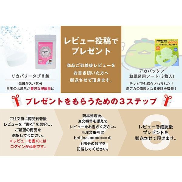 シャワーヘッド アリアミストボリーナ マイクロナノバブル コンパクト 節水 美容 保湿 保温 バスグッズ|bollina|11