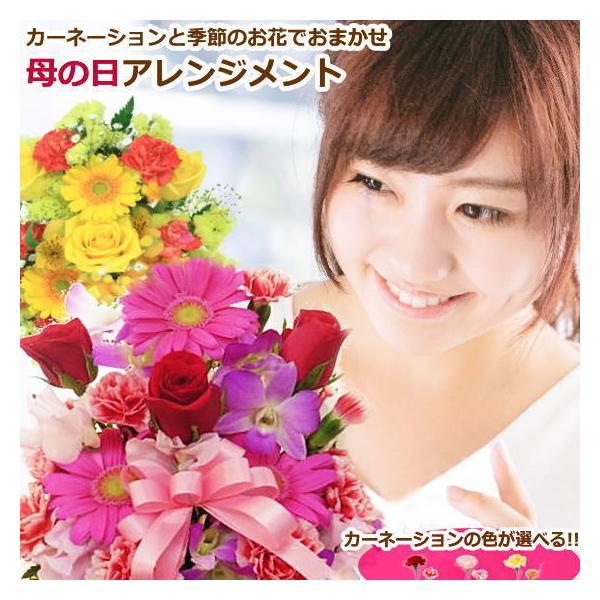母の日カーネーション入り おまかせ 母の日生花アレンジメント|bon-sense