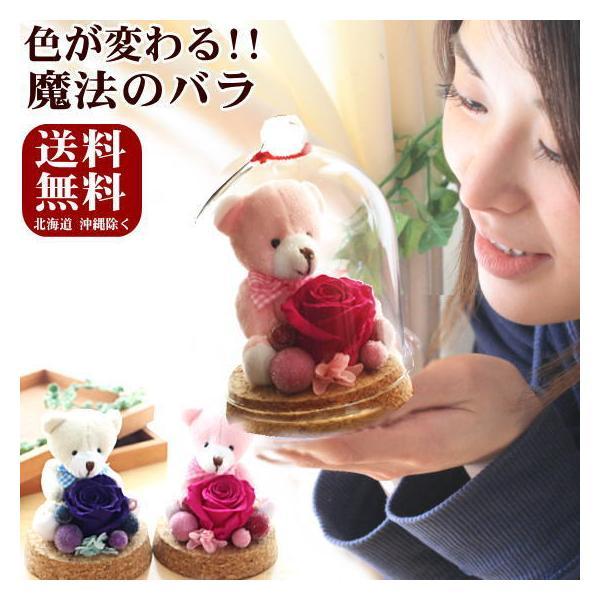 プリザーブドフラワー ギフト ガラスドーム ぬいぐるみと花 誕生日の花 色が変わる魔法のバラ KUMA・KUMA 送料無料|bon-sense