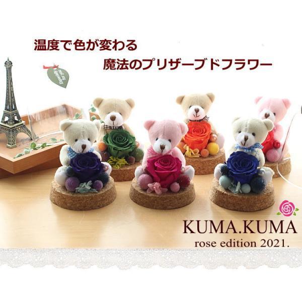 プリザーブドフラワー ギフト ガラスドーム ぬいぐるみと花 誕生日の花 色が変わる魔法のバラ KUMA・KUMA 送料無料|bon-sense|02