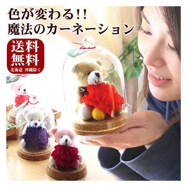 母の日 色が変わる魔法のカーネーション 花 プリザーブドフラワー KUMAKUMAフリル〜|bon-sense