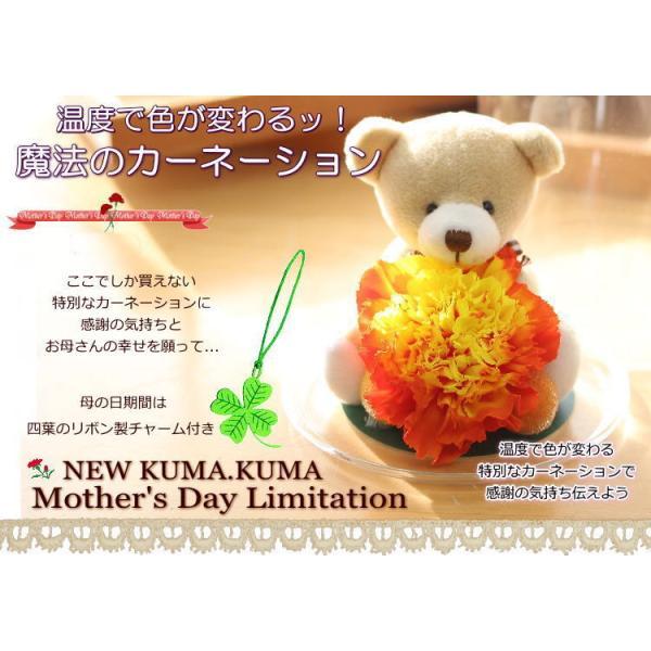母の日 色が変わる魔法のカーネーション 花 プリザーブドフラワー KUMAKUMAフリル〜|bon-sense|02