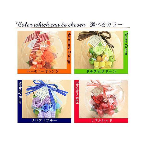 「ガラスの林檎」 プリザーブドフラワー ガラスドーム 無料ラッピング 即日発送|bon-sense|02