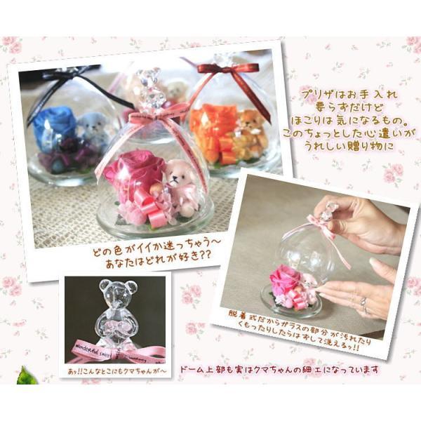 ガラスドーム 温度で色が変わる 魔法のプリザーブドフラワーちび・KUMA|bon-sense|02