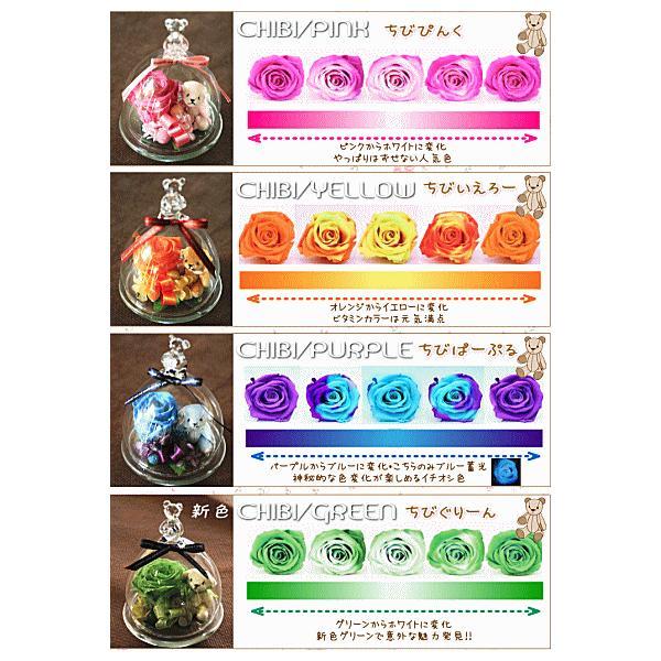 ガラスドーム 温度で色が変わる 魔法のプリザーブドフラワーちび・KUMA|bon-sense|03