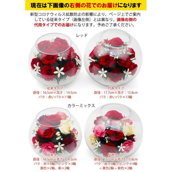 米寿のお祝い ちゃんちゃんこ 米寿テディベアセット HAPPYマザーフラワー 大 レッド 名入れ無し|bondsconnect|08