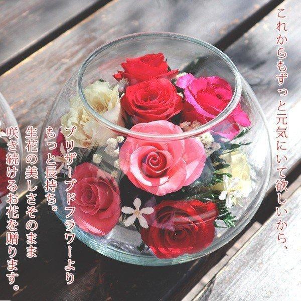 米寿のお祝い ちゃんちゃんこ 米寿テディベアセット HAPPYマザーフラワー 大 カラーミックス 名入れ無し|bondsconnect|04