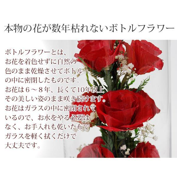 還暦祝い 女性 プレゼント 花 ハッピーマザーフラワー 大 レッド 通常発送|bondsconnect|06