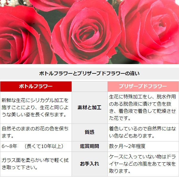 還暦祝い 女性 プレゼント 花 ハッピーマザーフラワー 大 レッド 通常発送|bondsconnect|07