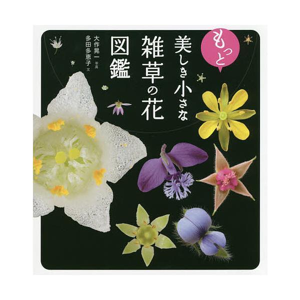 もっと美しき小さな雑草の花図鑑 / 多田多恵子 / 大作晃一