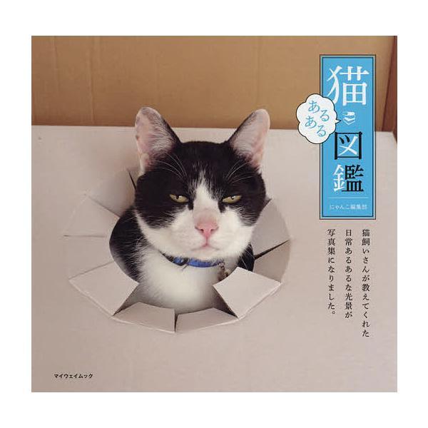 猫あるある図鑑 / にゃんこ編集部