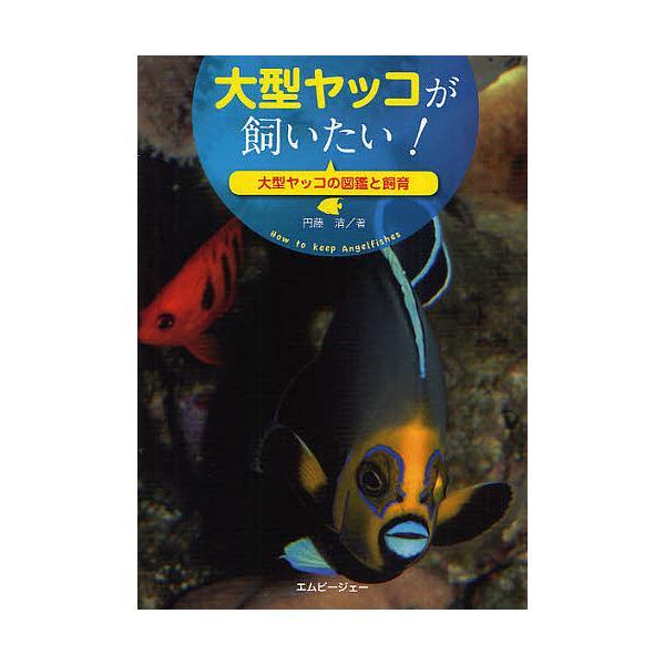大型ヤッコが飼いたい! 大型ヤッコの図鑑と飼育 / 円藤清