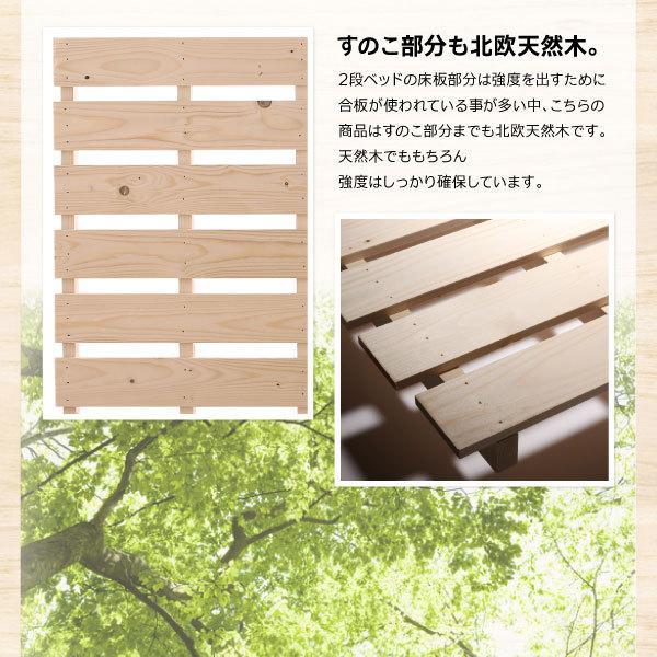 コンパクト2段ベッド Jeffy ジェフィ ベッドフレームのみ シングル ショート丈 天然木 ナチュラル 500043082|bookshelf|08