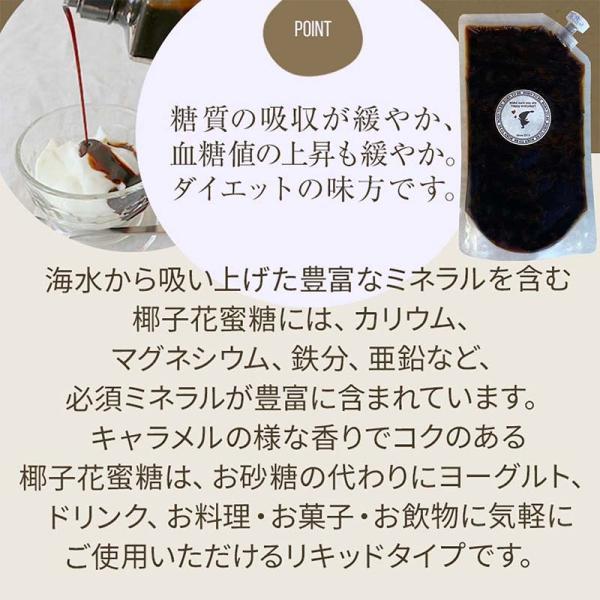 椰子花蜜糖(ココナッツフラワーシロップ) 400g 低GI ココナッツシュガー リキッド|born-to-be|03