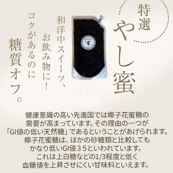 椰子花蜜糖(ココナッツフラワーシロップ) 400g 低GI ココナッツシュガー リキッド|born-to-be|04