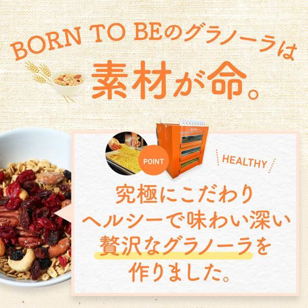グラノーラ Organic Maple 180g グルテンフリー ノンシュガー 有機ナッツ 有機ドライフルーツ|born-to-be|07