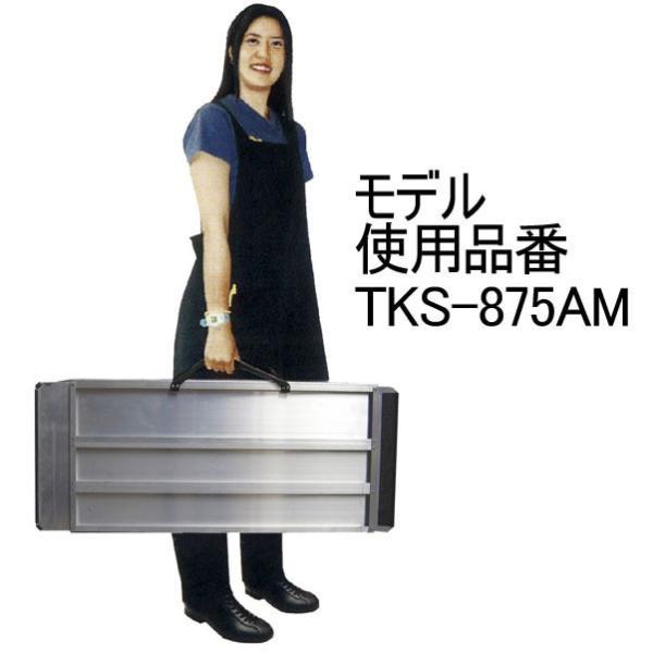 携帯スロープ FKS10-1000A【介護、福祉、介助、バリアフリー、高齢者】|bousaikeikaku|02