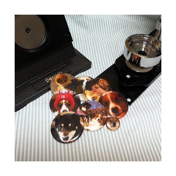 オリジナル缶バッジ(版下作成無料!)56mm 円型|bowwando