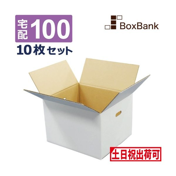 ダンボール 段ボール 白 100サイズ 取っ手穴付 (内寸36×33×26cm) 10枚セット 引っ越し ダンボール箱 100 展示 アート 毎日出荷