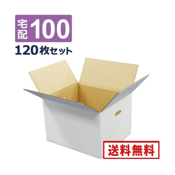 法人限定販売 ダンボール 段ボール 白 100サイズ 取っ手穴付(内寸36×33×26cm)  120枚セット 引っ越し ダンボール箱 100  展示 アート