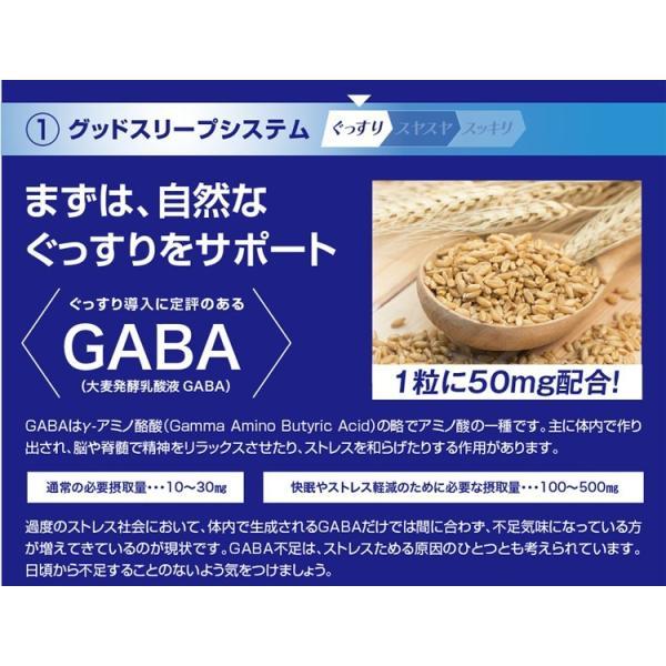 GABA ギャバ 睡眠 サプリ ダイエット食品 黒生姜 カルニチン ネルアップ 62粒 10袋セット ポイント消化 送料無料|bp-direct|13