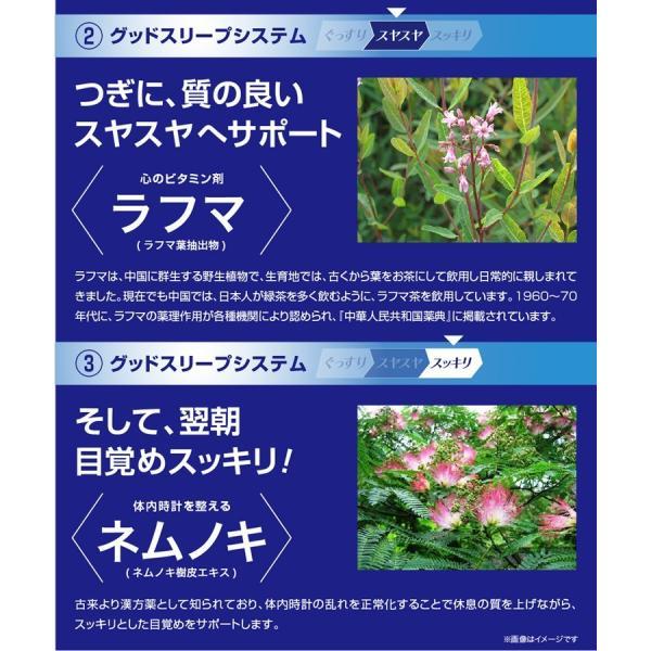 GABA ギャバ 睡眠 サプリ ダイエット食品 黒生姜 カルニチン ネルアップ 62粒 10袋セット ポイント消化 送料無料|bp-direct|14