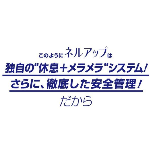 GABA ギャバ 睡眠 サプリ ダイエット食品 黒生姜 カルニチン ネルアップ 62粒 10袋セット ポイント消化 送料無料|bp-direct|17