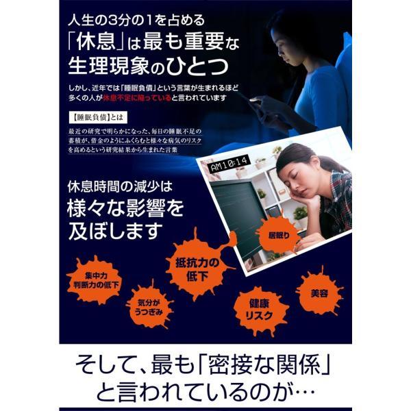 GABA ギャバ 睡眠 サプリ ダイエット食品 黒生姜 カルニチン ネルアップ 62粒 10袋セット ポイント消化 送料無料|bp-direct|04