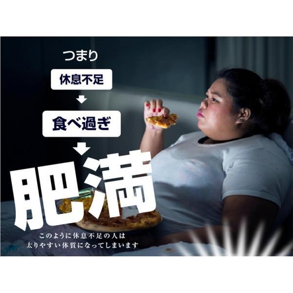 GABA ギャバ 睡眠 サプリ ダイエット食品 黒生姜 カルニチン ネルアップ 62粒 10袋セット ポイント消化 送料無料|bp-direct|06
