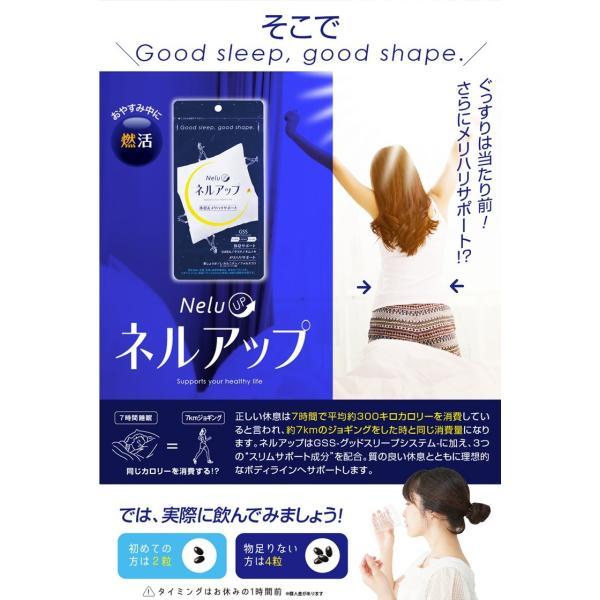 GABA ギャバ 睡眠 サプリ ダイエット食品 黒生姜 カルニチン ネルアップ 62粒 10袋セット ポイント消化 送料無料|bp-direct|07