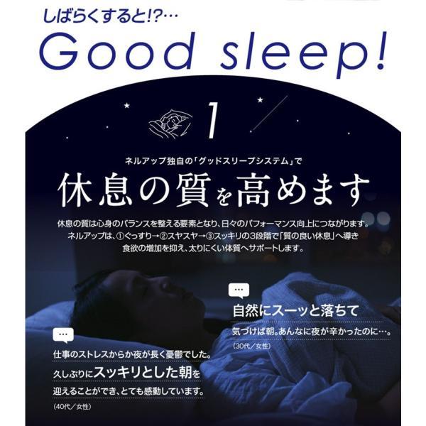 GABA ギャバ 睡眠 サプリ ダイエット食品 黒生姜 カルニチン ネルアップ 62粒 10袋セット ポイント消化 送料無料|bp-direct|08