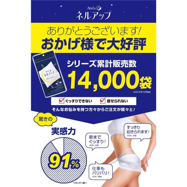 GABA ギャバ 睡眠 サプリ ダイエット食品 黒生姜 カルニチン ネルアップ 62粒 10袋セット ポイント消化 送料無料|bp-direct|10