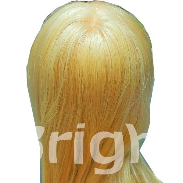 N.B.A.A. アップウィッグII シャイニー NB-WU2S 人毛100% キラキラ輝く髪 アップスタイルの練習、撮影におすすめマネキン NBAA bright08 06