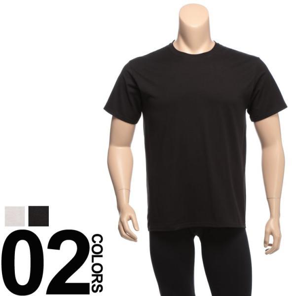 肌着 2枚セット 大きいサイズ メンズ Hanes ヘインズ 抗菌防臭 綿100% クルーネック 半袖 アンダーTシャツ 3L 4L btclub